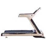 Treadmill-inSPORTline-Gardian-G12 (1)